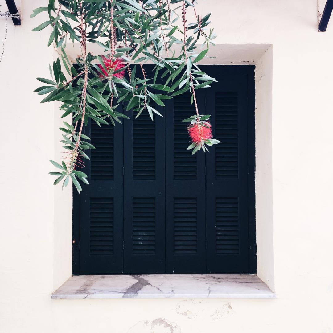 Black plantation shutters